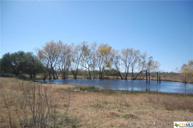 4453 Barth, Lockhart, TX 78644 (MLS #367420) :: Magnolia Realty
