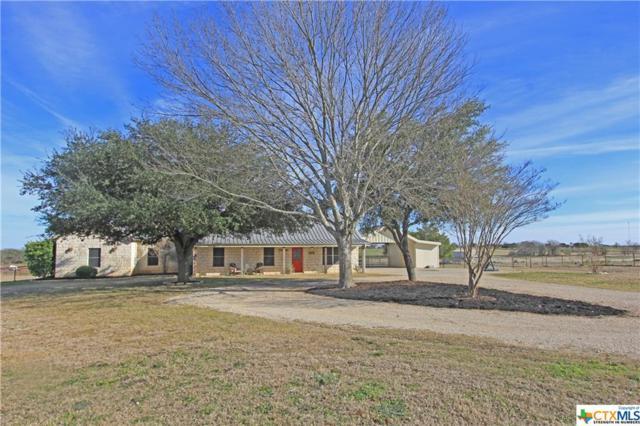 6991 Smith Dairy Road, Belton, TX 76513 (MLS #367493) :: Magnolia Realty