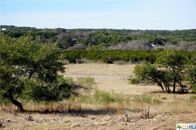 752 Caballo Trail, Canyon Lake, TX 78133 (MLS #367495) :: Magnolia Realty