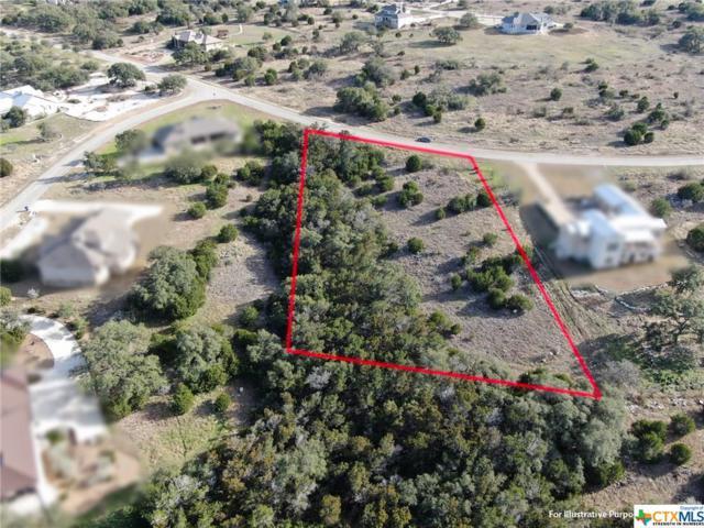 1657 Decanter Drive, New Braunfels, TX 78132 (MLS #367530) :: Magnolia Realty