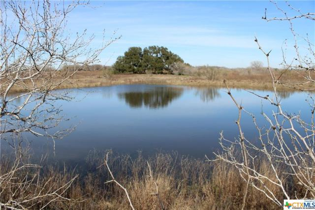 TBD County Road 429, Stockdale, TX 78160 (MLS #367541) :: The i35 Group