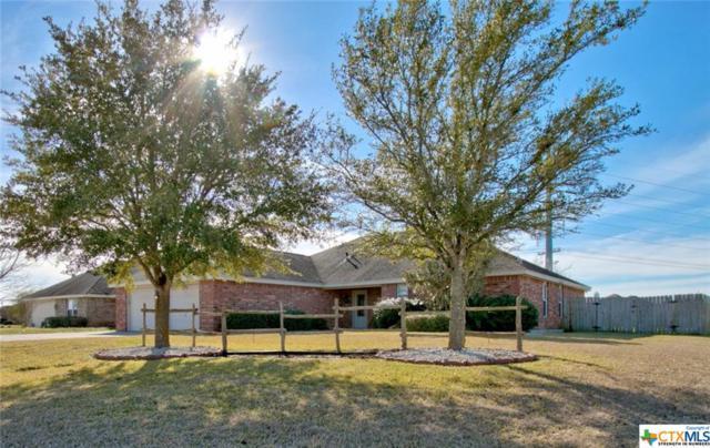 144 Castlewood, Seguin, TX 78155 (MLS #367558) :: Magnolia Realty