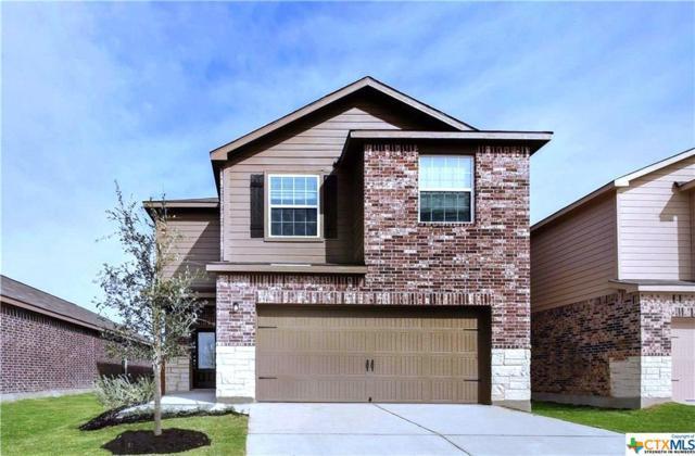 13324 William Mckinley Way, Manor, TX 78653 (MLS #367593) :: Magnolia Realty