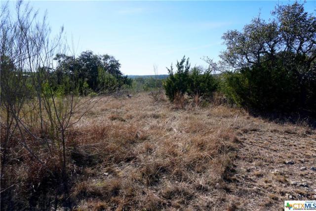 1061 Las Brisas Dr, Canyon Lake, TX 78133 (MLS #367604) :: Magnolia Realty