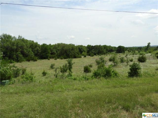 0000 Fm 1670, Belton, TX 76513 (MLS #367802) :: Vista Real Estate