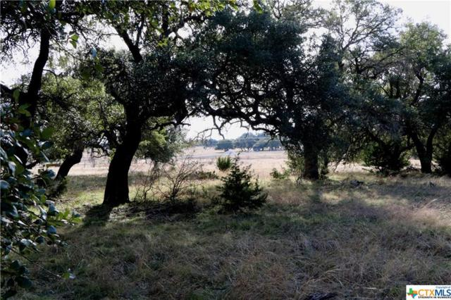 00 South Waterbuck Way, Lampasas, TX 76550 (MLS #367854) :: Vista Real Estate