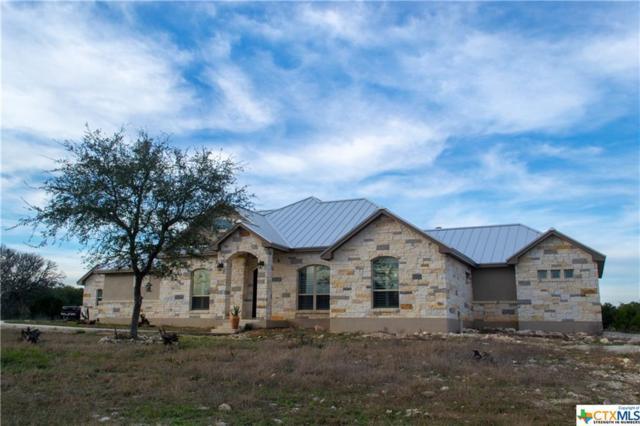 221 Mexican Hat, Spring Branch, TX 78070 (MLS #367996) :: Vista Real Estate