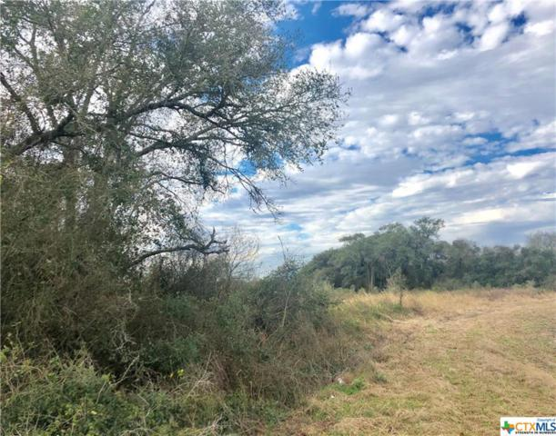00 County Road 276, Edna, TX 77957 (MLS #368023) :: The Zaplac Group