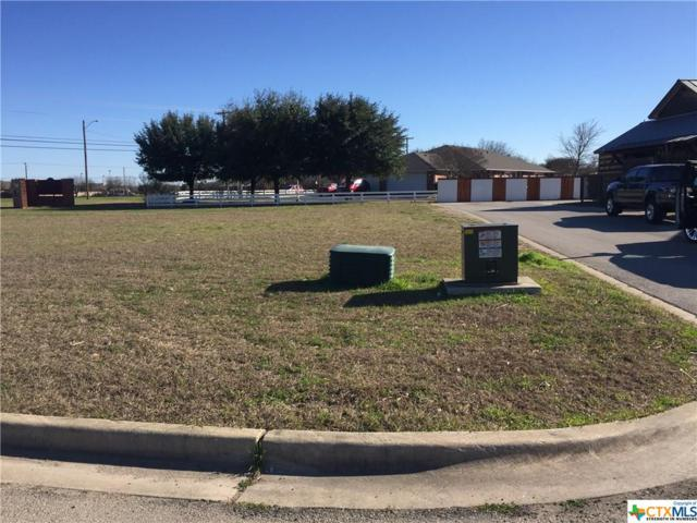 Lot 11 Gruene At Vineyard Crossing, New Braunfels, TX 78130 (MLS #368127) :: The Zaplac Group