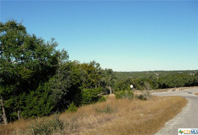 1038 Las Brisas, Canyon Lake, TX 78133 (MLS #368157) :: Magnolia Realty