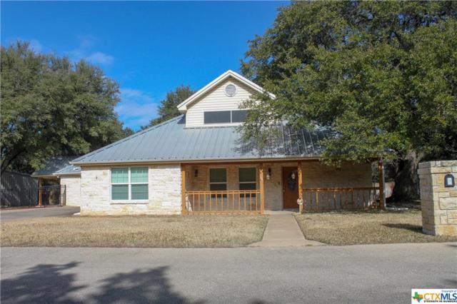 4 Red Dog Court, Belton, TX 76513 (MLS #368230) :: Erin Caraway Group