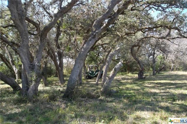 557 Fm 883, Berclair, TX 78107 (MLS #368302) :: Kopecky Group at RE/MAX Land & Homes