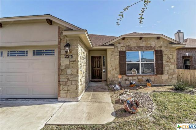 223 Terra Vista, Victoria, TX 77904 (MLS #368331) :: Kopecky Group at RE/MAX Land & Homes