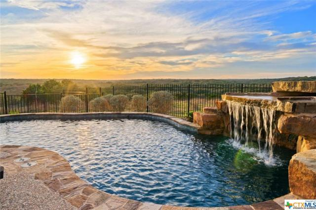 1415 Madrid Trace, San Marcos, TX 78666 (MLS #368456) :: Erin Caraway Group