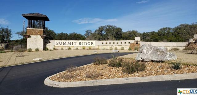 000 Private Road 2775, Mico, TX 78056 (MLS #368562) :: Brautigan Realty