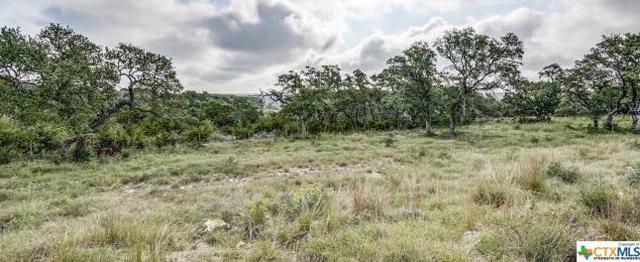 2097 Passare, New Braunfels, TX 78132 (MLS #368640) :: Vista Real Estate