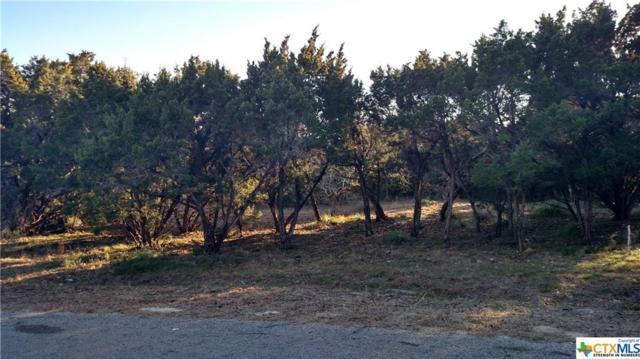 303 Forever Ridge, Helotes, TX 78023 (MLS #368732) :: Erin Caraway Group
