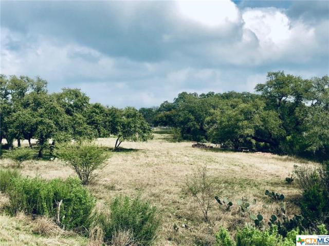 109 Passade, New Braunfels, TX 78132 (MLS #368935) :: Magnolia Realty