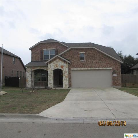 804 Cathedral Court, Harker Heights, TX 76548 (#369086) :: 12 Points Group
