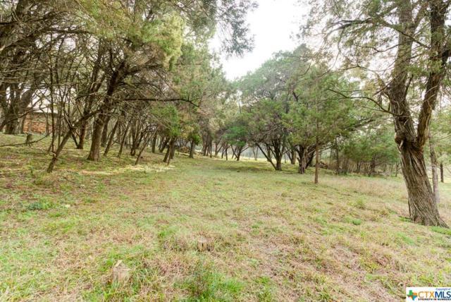 826 Gumnut Grove, New Braunfels, TX 78132 (MLS #369125) :: Vista Real Estate