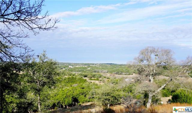 2432 Bella Vista, Canyon Lake, TX 78133 (MLS #369219) :: Magnolia Realty
