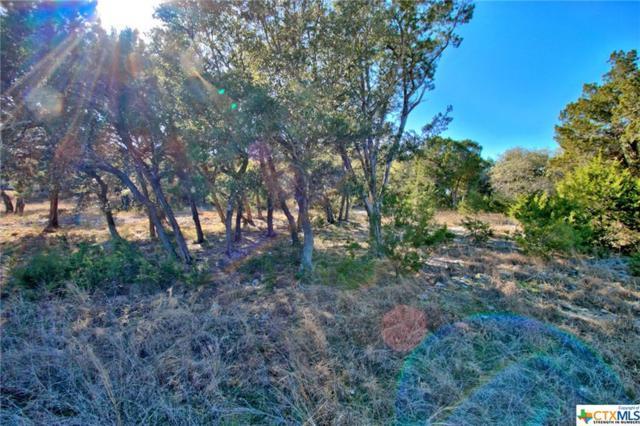 112 Arroyo, Boerne, TX 78006 (MLS #369428) :: Vista Real Estate