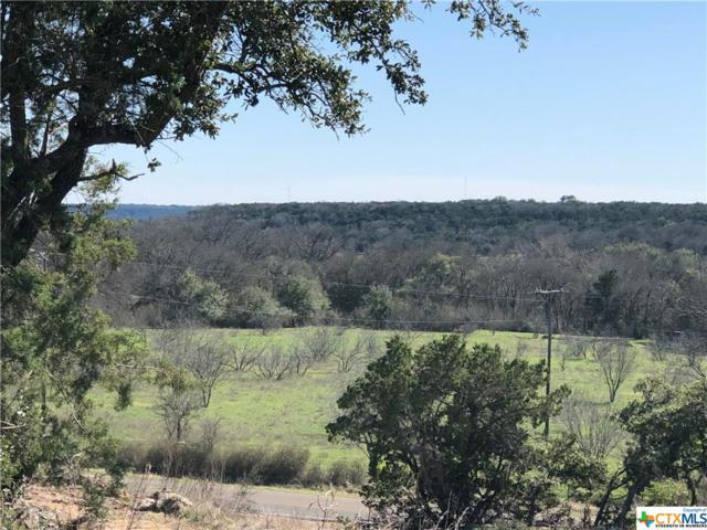 TBD Sparta Road, Belton, TX 76513 (MLS #369508) :: The i35 Group
