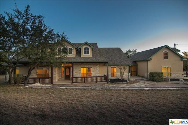 230 Ridge, Spring Branch, TX 78070 (MLS #369608) :: Magnolia Realty