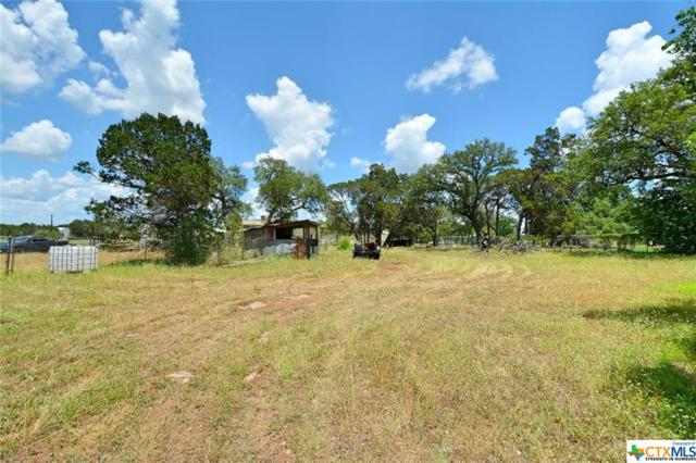 318 Fm 1863, New Braunfels, TX 78132 (MLS #369632) :: The i35 Group