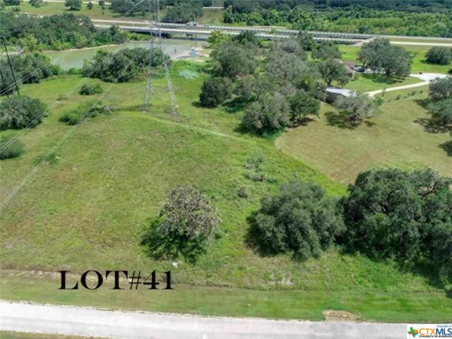 Lot 41 Perdido Pointe Estates, Victoria, TX 77905 (MLS #369721) :: Kopecky Group at RE/MAX Land & Homes