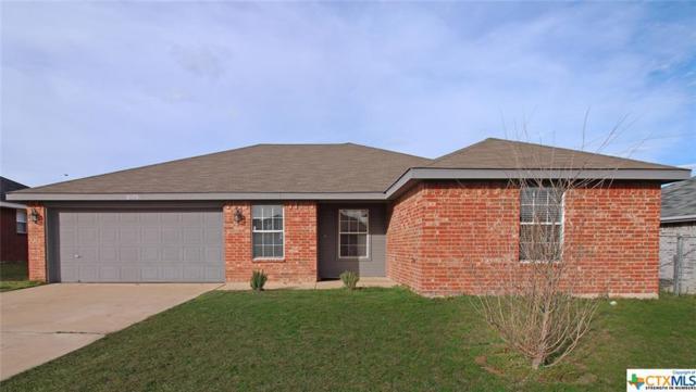 2805 Wesley Drive, Killeen, TX 76549 (MLS #369911) :: Vista Real Estate