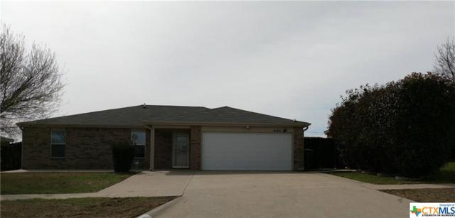 4102 Beach Ball Drive, Killeen, TX 76549 (#369983) :: 12 Points Group