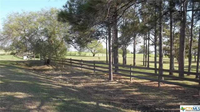 365 Cr 473, Palacios, TX 77465 (MLS #370121) :: Kopecky Group at RE/MAX Land & Homes