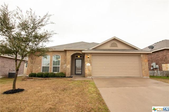 6017 Alexandria Drive, Temple, TX 76502 (#370129) :: 12 Points Group