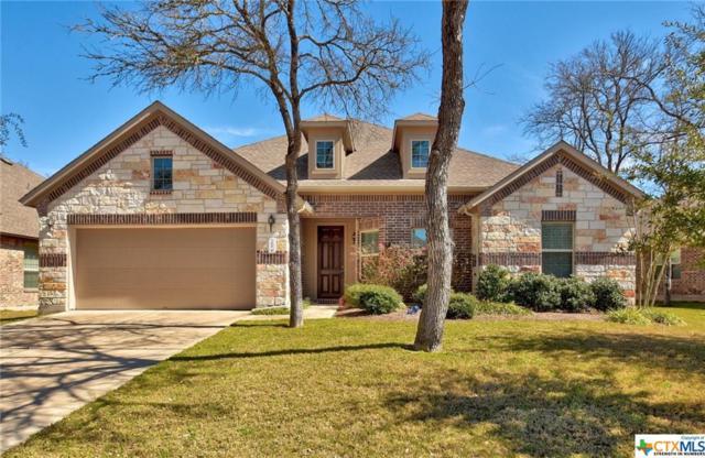 165 Treehaven, Buda, TX 78610 (MLS #370277) :: Magnolia Realty