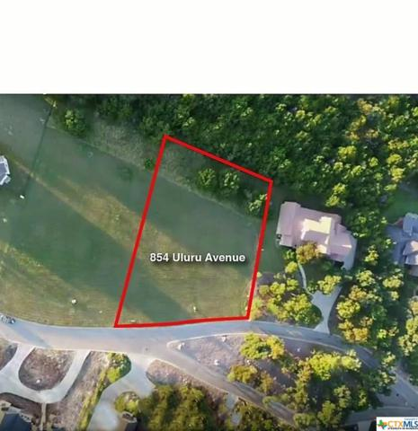 854 Uluru Avenue, New Braunfels, TX 78132 (MLS #370311) :: Vista Real Estate