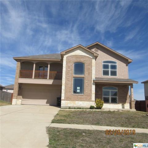 507 W Vega Lane, Killeen, TX 76542 (MLS #370320) :: Vista Real Estate