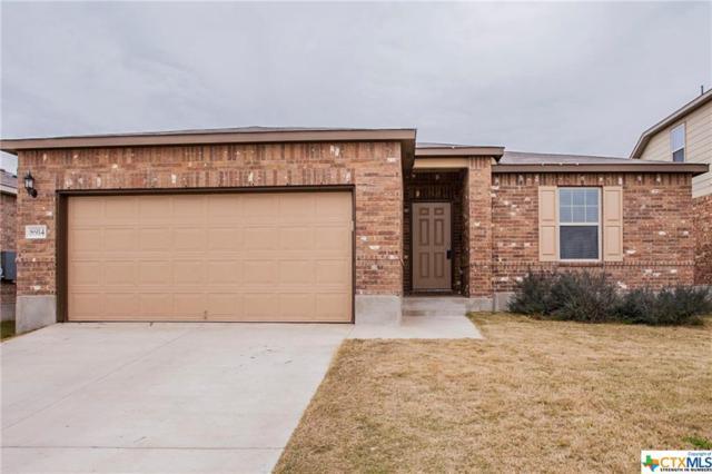 8914 Night View, Temple, TX 76502 (MLS #370407) :: Vista Real Estate