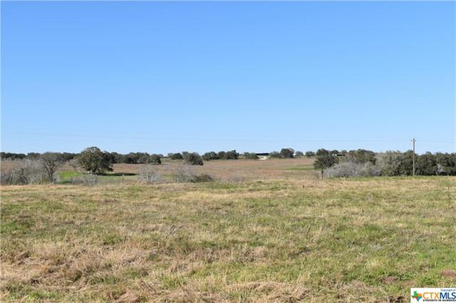 000 Fm 2043, Goliad, TX 77963 (MLS #370413) :: The Zaplac Group