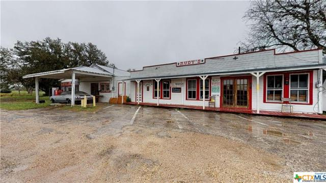 252 State Highway 72, Yorktown, TX 78164 (MLS #370598) :: RE/MAX Land & Homes
