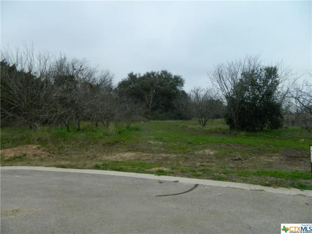 445 Creekside Drive, Belton, TX 76513 (MLS #370707) :: Erin Caraway Group