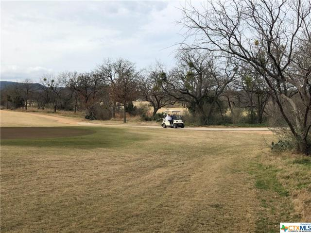 Lot 50 Chaumont, Kingsland, TX 78639 (#370754) :: Realty Executives - Town & Country