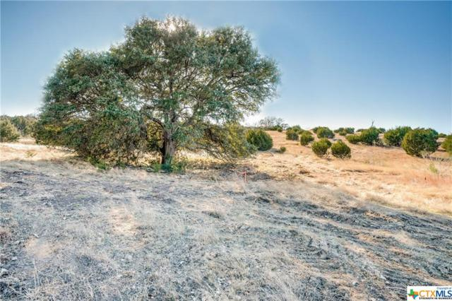 12171 Ranch Road 1623 Lot 22, Blanco, TX 78606 (#370767) :: Realty Executives - Town & Country