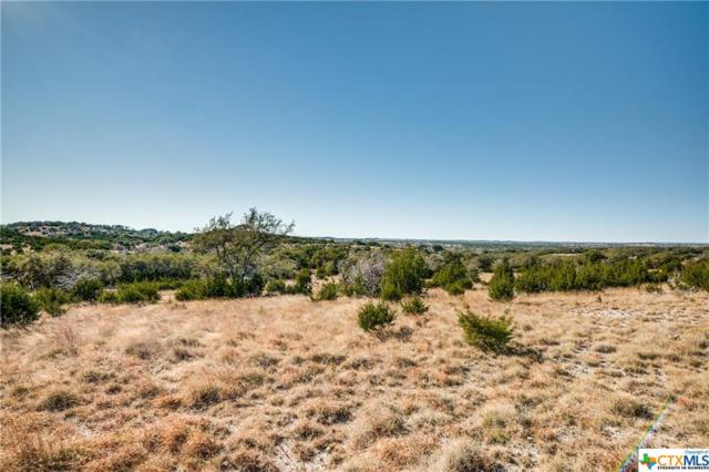 12171 Ranch Road 1623 - Lot 32, Blanco, TX 78606 (#370769) :: Realty Executives - Town & Country