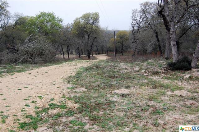 Lot 73 Powder, Luling, TX 78648 (MLS #370943) :: Magnolia Realty