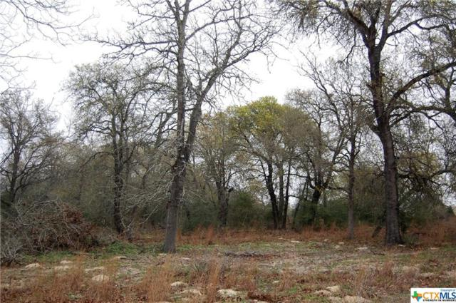 Lot 74 Powder, Luling, TX 78648 (MLS #370945) :: Vista Real Estate