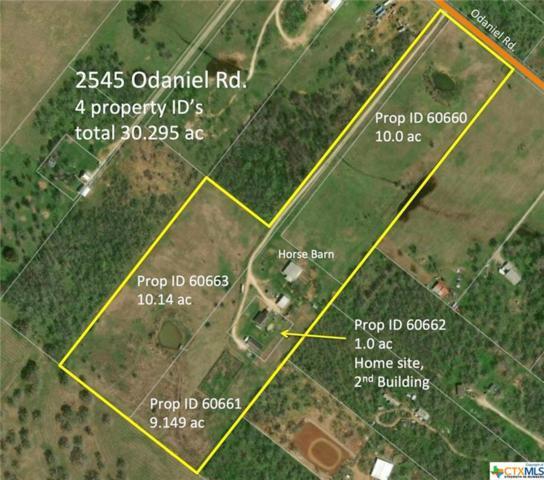 2545 O'daniel, Seguin, TX 78155 (MLS #370954) :: Magnolia Realty