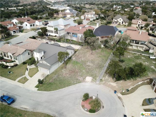 511 Elm Trail, New Braunfels, TX 78130 (MLS #371039) :: Vista Real Estate