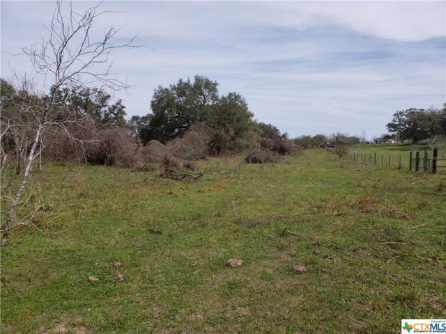 4710 Us Highway 59, Victoria, TX 77905 (MLS #371351) :: Magnolia Realty