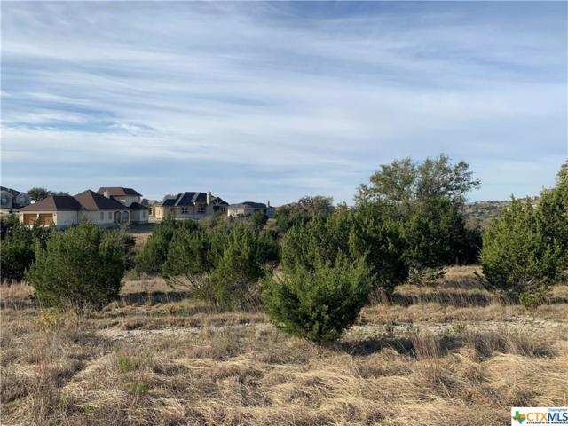 287 Secret Way #1, Spring Branch, TX 78070 (MLS #371400) :: Kopecky Group at RE/MAX Land & Homes